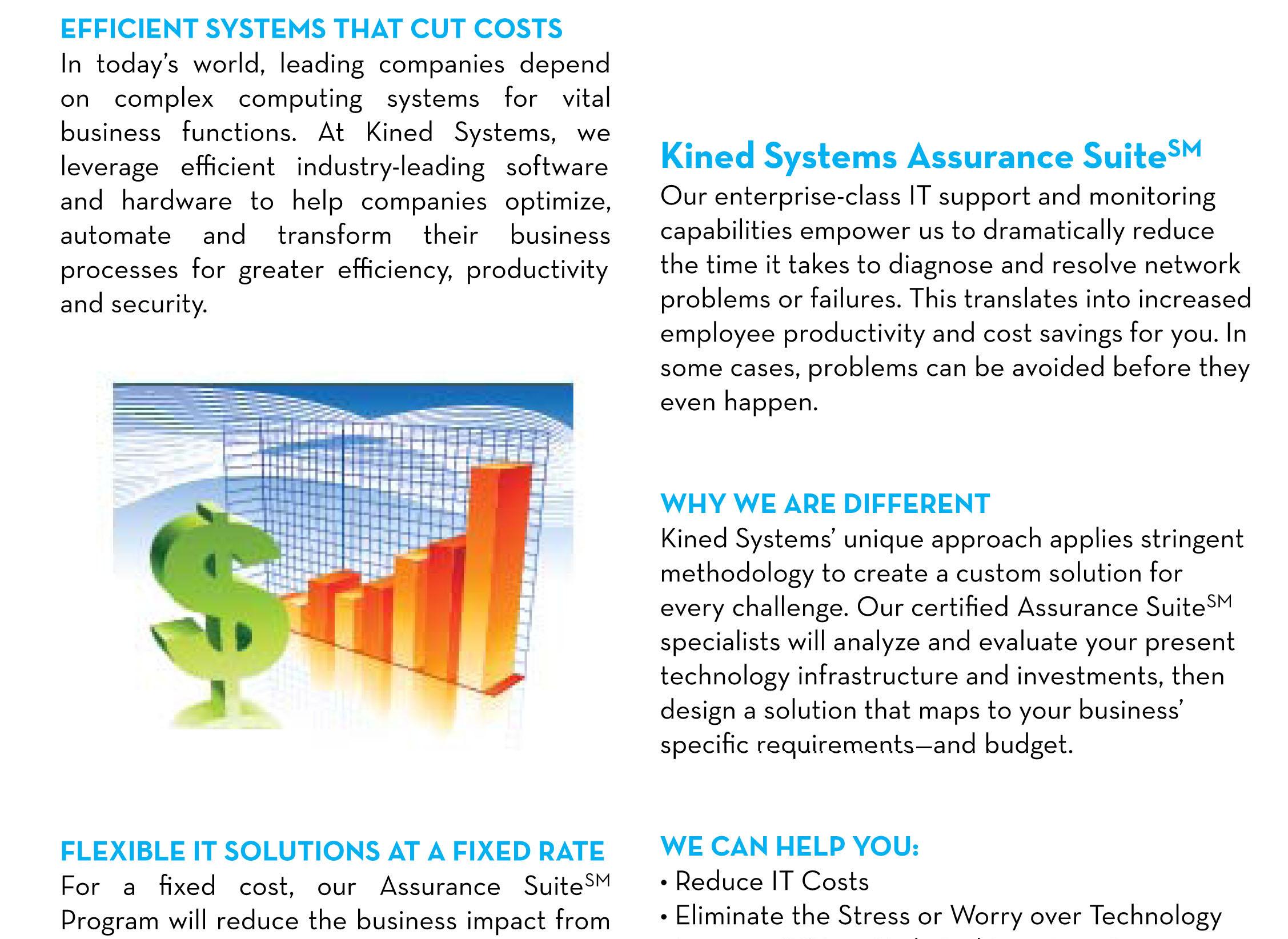 Kined Systems Inc  - Company